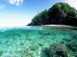 Фиджи – незабываемое путешествие: фото, острова, отдых.